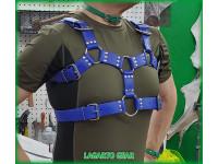 GatorStrap™ Bulldog Hybrid Harness 6 buckles 1.5 inch wide strap