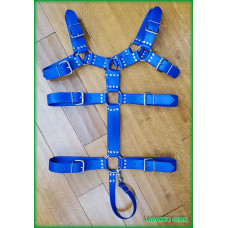 GatorStrap™ Bulldog Torso Belt Harness 8 buckles 1.5 inch wide strap