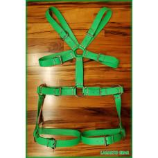 GatorStrap™ X-Chest Torso Thigh Harness 8 buckle 1.5 inch wide strap